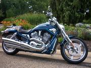 2005 Harley-Davidson VRSCSE Screaming Eagle V-Rod CVO